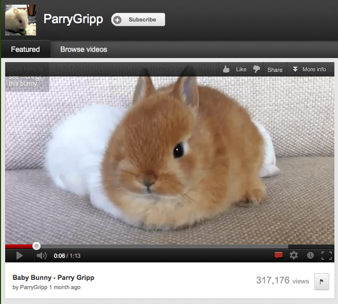 Why Parry Gripp Is Better For Your Brand Than Brad Pitt